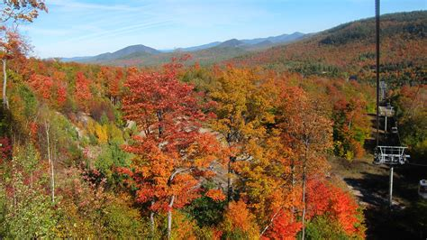 Reviews for 5-Day New England Fall Foliage Vermont Rout